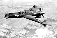 USAAF Curtiss XP-55 42-78846