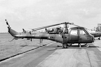 Scout (Westland Helicopters)
