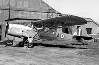 Army Air Corps 662 Squadron Auster T.7 WE597/A