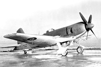 Royal Navy Blackburn Firebrand TF.3 DK386