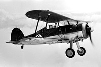 Latvian Air Force Gloster Gladiator Air to Air