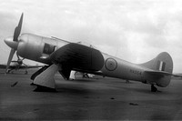 Indian Air Force Hawker Tempest F.2 HA554 (1949)