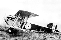 Royal Flying Corps Sopwith Dolphin Biplane D5263