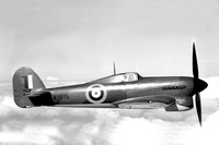 Royal Air Force Hawker Typhoon IA R7579 Air to Air