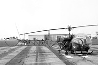 AAC Royal Irish Rangers Westland Sioux AH.1 XT559 at RAF Wattisham (09.09.1968)