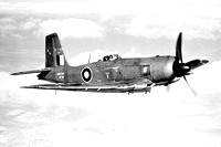Royal Navy Blackburn Firebrand TF.V EX726 Air to Air