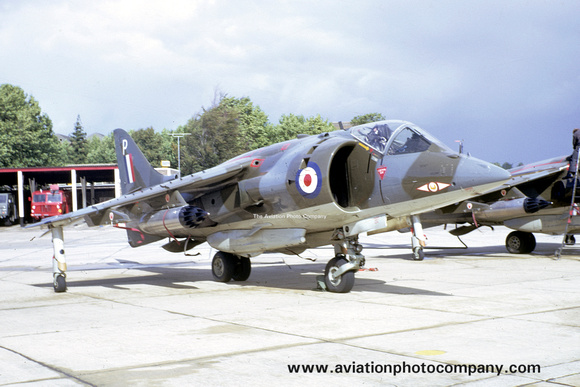 The Aviation Photo Company: Hawker Siddeley Harrier &emdash; RAF 1 Squadron Hawker Siddeley Harrier GR.1 XV776/P (1970)